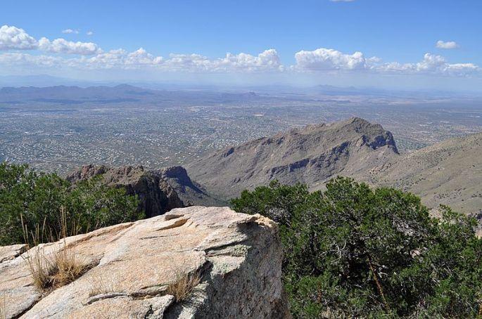 Tucson. Credit: Matthew Schallan.