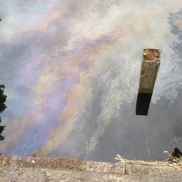 oil spill wensum
