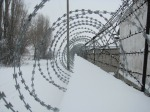 barbed-265674_1920