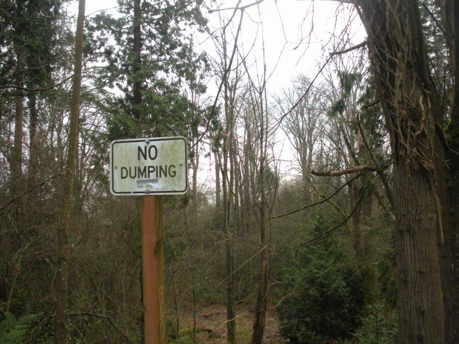 Forest no dump