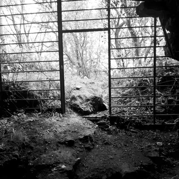 Cave gate