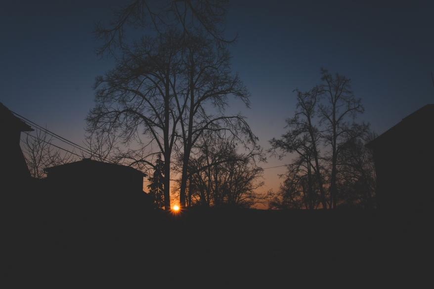 pexels-photo-323314